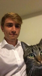 Mature Queen's student looking for Sept. room for me and my cat