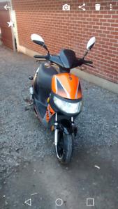 scooter 50cc inspecte et plaque