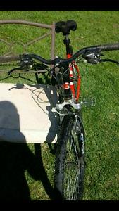 Kuwahara savage mountain bike