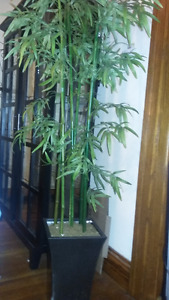Bamboo tree decor