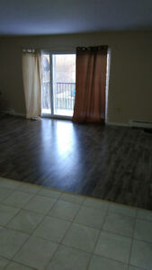 Spacious one bedroom apartment (Entire apartment not shared)