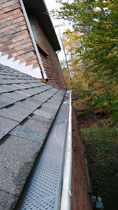 Eavestrough Cleaning/Fall Clean-ups! London Ontario image 9