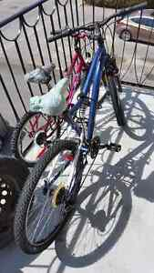 "Ccm Vandal 26"" mountain bike almost new"