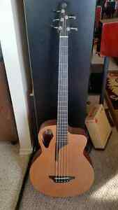 Stonebridge 5 string Acoustic Bass Guitar Kitchener / Waterloo Kitchener Area image 1