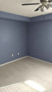 Downtown Professional Painter * Reasonable Rates