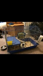 Small Animal Collapsable Cage