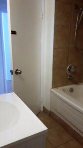 Basement Suite Delton full bath