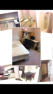1 BEDROOM for rent in SUTHERLAND *7 MIN BY BUS TO UNI*