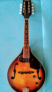 Fender Mandolin MINT