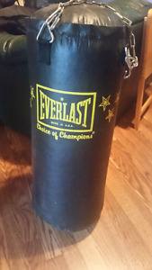 Everlast heavy bag with hanging chains