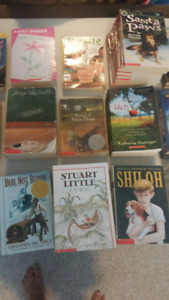 Make an offer!! Classroom Library/ Novel Sets - over 600 books