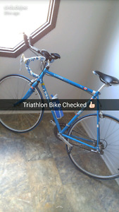 18 Speed Triathlon Bike