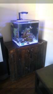 Salt water reef aquarium