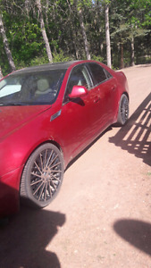 08 cts4 high premium package 167km
