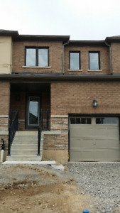 Brand New Townhouse for Rent in Stony Creek - 3 Bed + 2.5 Bath