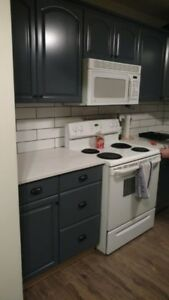 Kitchen Cabinet Refinishing / Painting - Professional Results