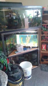 19 aquariums