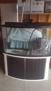 90 Gal Bow Aquarium with Stand