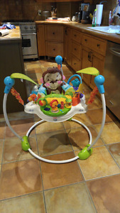 Jumperoo Fisher-Price Precious Planet