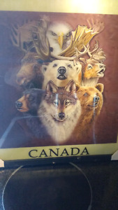 Picture of all canadian amimals new never been unrapped