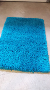 $9..Shag.  5feet x 42 in wide very clean