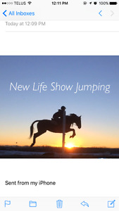 RIDING LESSONS AND JUMPING COACHING