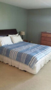 Furnished 3 Bedroom or 2 BDR and Den