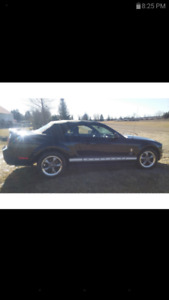 2006 mustang convertible. Triple blk. Low klm.  Extra factory rm
