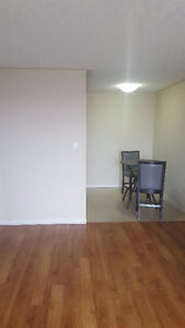 Great Price that includes free Furniture (A Year Old)