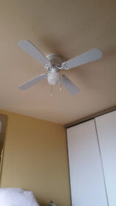 FOR SALE!!  Asking $50.00 for 2 SETS OF CEILING FANS