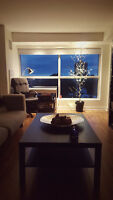 Amazing 1 bedroom apartment 5min from Downtown Ottawa