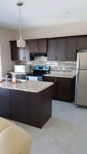 Room for rent in New House
