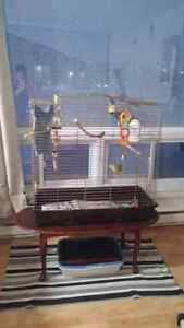 Cage à oiseau négociable