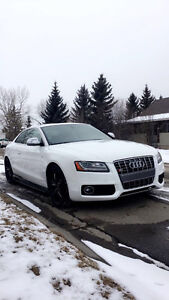 *Moving Need Gone* 2009 Audi S5