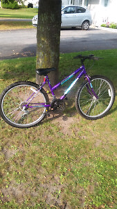 Ladies Mountain bike 15 speeds