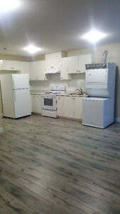 $1150/ 1br - 6 month old basement suite for rent(Langley)