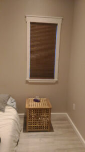 Cordless Blackout Blinds ($80 the for pair)