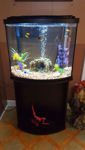 26 Gallon Bow Front Fluval Aquarium with Stand