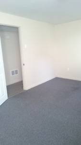 ready to rent 1 brdrm apt near village mall