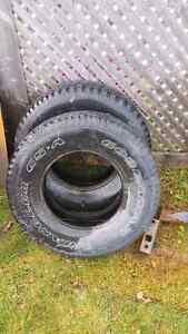 Tires St. John's Newfoundland image 1