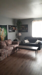 1  Bedroom Apartment  &  3 Bedroom House for RENT in Welland!!!!