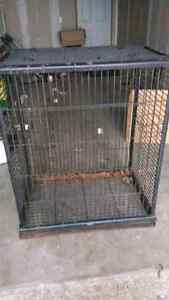 Large bird cage, needs a little tlc