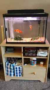 20 gal fish tank and stand