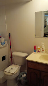 Independent clean and quite accommodation on Helene Cr Kitchener / Waterloo Kitchener Area image 5