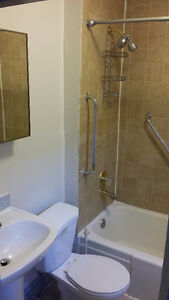 Secure 1BR Apartment Available Now or Nov 1st