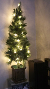Indoor/outdoor Tree with lights,