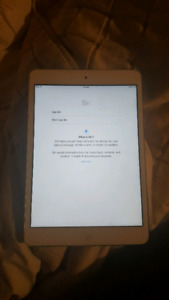 2015 iPad mini 16gb