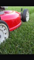 Need your grass cut/gutters cleaned/dump haul?