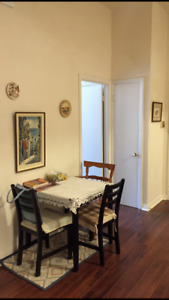 4 1/2 Apt For Rent In Downtown Montreal