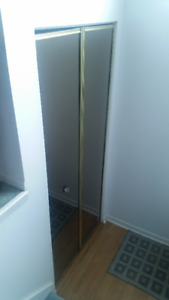 Large Mirror Closet Doors - FREE - first come first served
